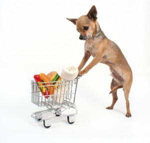 a dog pushes a shopping cart as a pet food delivery service