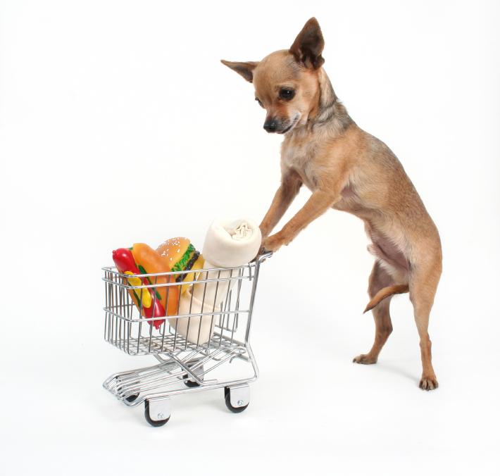 Pets St Dog Food