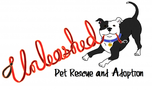 Pet Rescue,pet rescue near me,pet rescue saga,unleashed pet rescue,pet rescue by judy